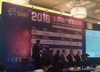 GAAF 2016 Global Capital Trust